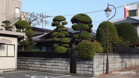 japanlastpictures - 36 copia